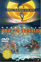 Fury in Shaolin Temple